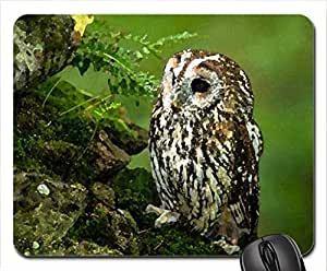 Little cutie Mouse Pad, Mousepad (Birds Mouse Pad, 10.2 x 8.3 x 0.12 inches)