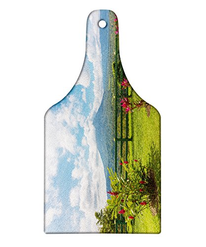 Lunarable Volcano Cutting Board, View of the Arenal Volcano from Observation Point Costa Rica Scenic View, Decorative Tempered Glass Cutting and Serving Board, Wine Bottle Shape, Pale Blue Pink Green