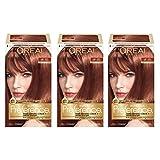Best L'oreal Paris Shine Serums - L'Oréal Paris Superior Preference Permanent Hair Color, 6R Review