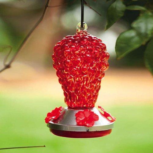 Squirrel Flowers Proof (Grapes Hummingbird Bird Feeder)