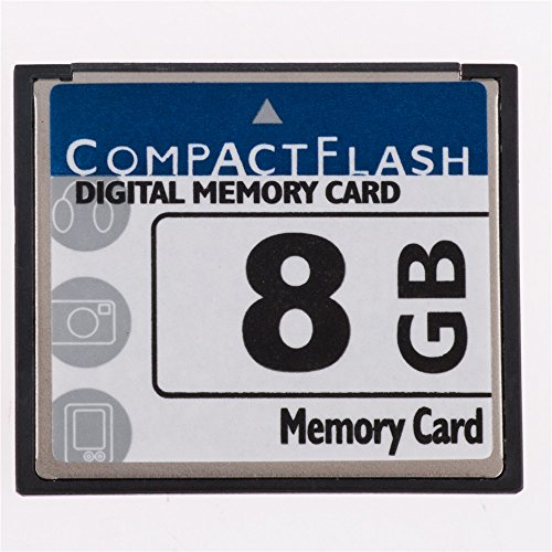 FengShengDa 8GB Compact Flash Memory Card Speed Up To 50MB/s, Frustration-Free Packaging- SDCFHS-8G-AFFP (8G) by fsrdGT