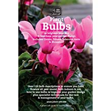 Plant Bulbs: To brighten your day & fine-tune your garden design