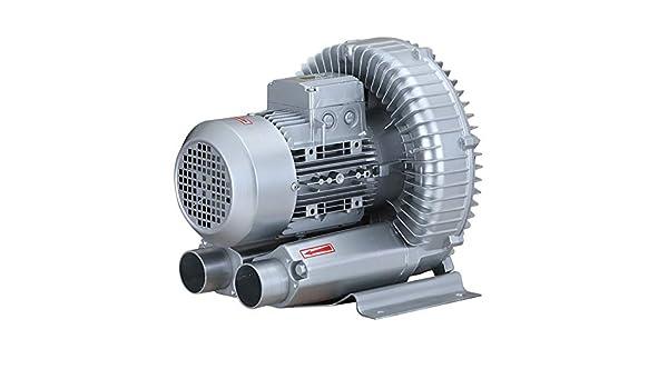 LAY Ventilador, Bomba De Aire Vórtice De Alta Potencia del Ventilador Vórtice De Alta Presión Industrial Potente Soplador De Ventilador Centrífugo Ventilador Silencioso 220V,1: Amazon.es: Deportes y aire libre