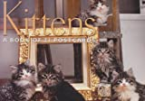 Kitten, Browntrout Publishers, 156313862X