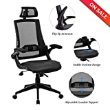 LCH High Back Ergonomic Mesh Office Chair with Leather Seat,Flip-up Armrests,90°-110° Tilt Lock,Adjustable Back Lumbar Support and Headrest,Executive Task Computer Desk Chair