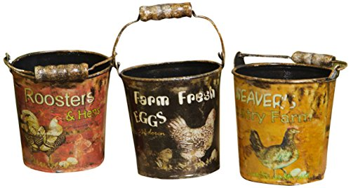 Your Hearts Delight 4 by 3-1/2-Inch Farm Fresh Eggs in Assorted Buckets, Small