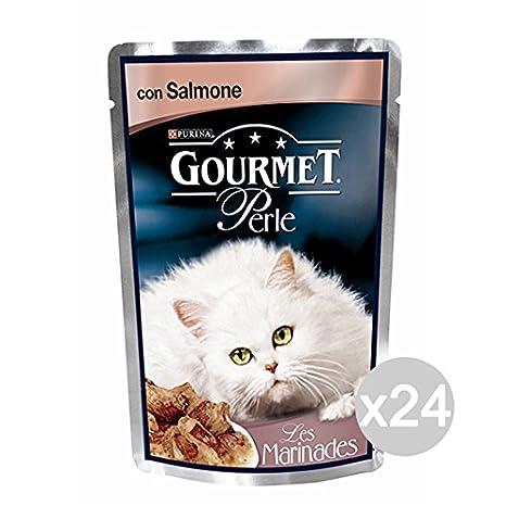 Set 24 PURINA Gourmet Hilos Salmon Perlas Sobre Gr85 Alimento Para Los Gatos: Amazon.es: Juguetes y juegos