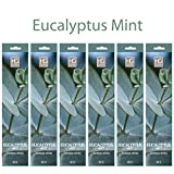 Hosley's 240 Pack Eucalyptus Mint incense Sticks. Highly Fragranced. Suggested use with Aromatherapy meditation. Hand fragranced, infused with essential oils. by HG Global