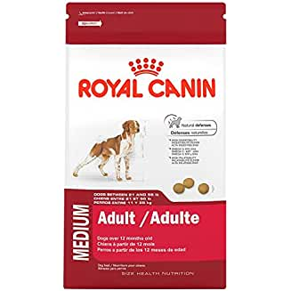 Royal Canin Medium Adult Size Dog Food