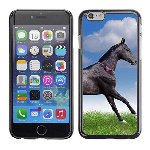 "Premio Sottile Slim Cassa Custodia Case Cover Shell // V00002849 cheval teke akhal // Apple iPhone 6 6S 6G PLUS 5.5"""