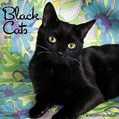 2018 Just Black Cats Wall Calendar