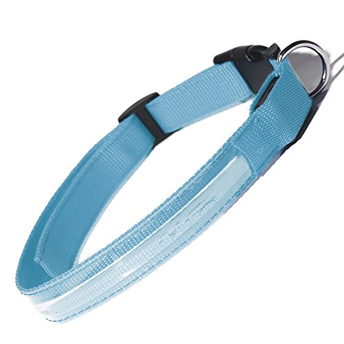 (Paws & Pals LED Pet Dog Cat Neck Collar Flashing Color Light Up Night Safety Strap - Small, Blue)