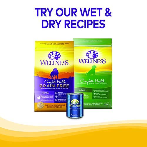 Wellness WellBites Grain-Free Beef & Turkey Recipe Soft & Chewy Dog Treats, 6 Ounce Bag
