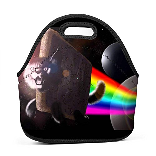 Rainbow Sugar Cat Speed Drawing Lunch Tote Thick Insulated Thermal Lunch Bag Waterproof Outdoor Travel Picnic Carry Case Lunch Handbags
