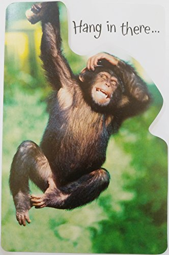 - Hang in there - Feel Better Soon - Get Well Greeting Card - Cute Funny w/ Monkey