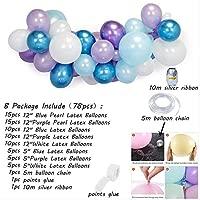 Non-branded Frozen Princess Party Balloons Christmas ...