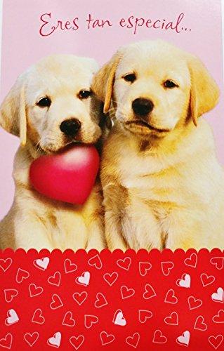Eres tan especial... Feliz Dia del Amor y la Amistad - Romantic Valentine's Day / San Valentin Greeting Card in Spanish w/ Dogs (Husband Esposo Wife Esposa Boyfriend Novio Girlfriend Novia)