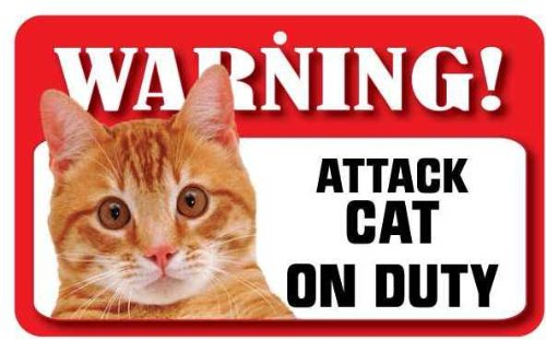 Ginger Cat Pet Sign - Laminated Card Instant Gifts