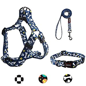Dog Harness, Dog Leash and Dog Collar, Adjustable Step in Small Dog Harness and Puppy Collars, No Pull Dog Leashes, Set…