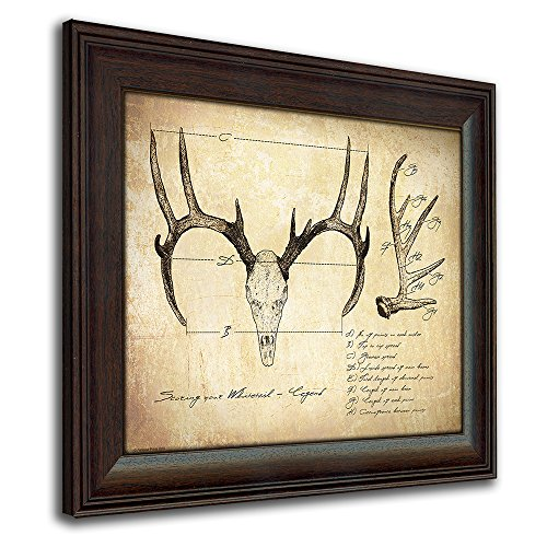 Personal Prints Whitetail Deer Big Game Scoring Print - 14in x 17in Framed Behind Glass