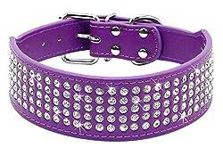 Purple Rhinestones Dog Collar