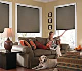 Windowsandgarden Custom Cordless Single Cell Shades, 24W x 68H, Espresso, Any size from 21' to 72' wide and 24' to 72' high Available