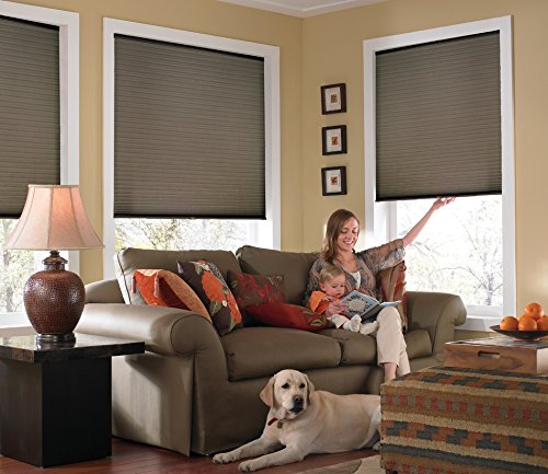 Windowsandgarden Custom Cordless Single Cell Shades, 24W x 44H, Espresso, Any Size from 21″ to 72″ Wide and 24″ to 72″ high Available