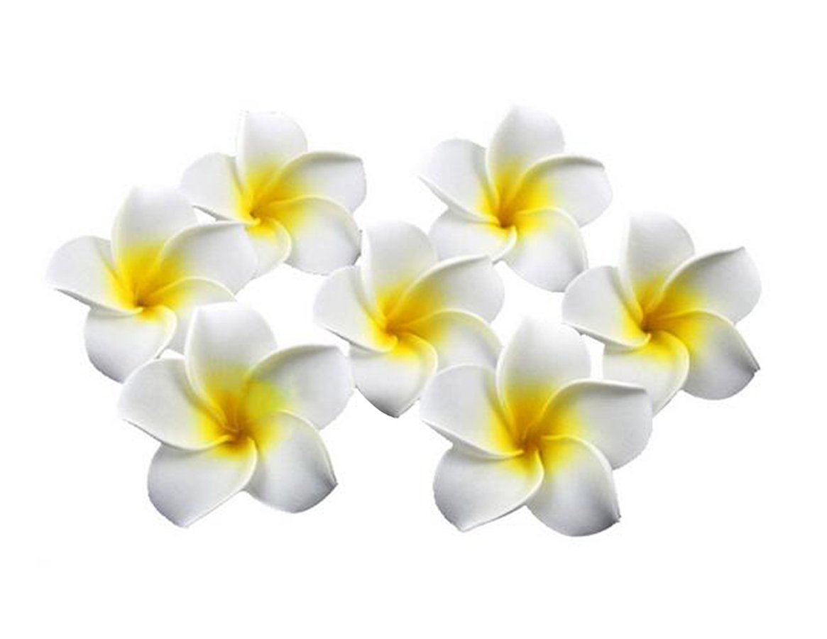 12PCS 2.36 Fleur Hawaïian Hawaï Plumeria Foam Clips pour cheveux pour la fête de mariage nuptiale Décoration de plage Hair Barrette Hairwear pour les femmes Girl(jaune) erioctry