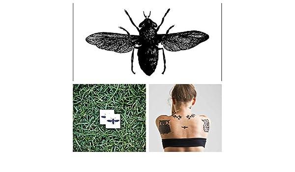Tatuaje Temporal Tattify - Escarabajo - Bicho (Juego de 2): Amazon ...