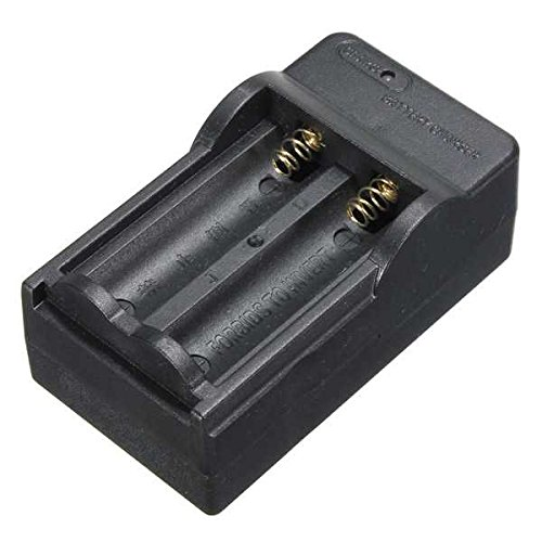 Amazon.com: Double Battery Charger For 3.7V Li-ion 14500 ...
