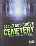 Bachelor's Grove Cemetery and Other Haunted Places of the Midwest (Haunted America)
