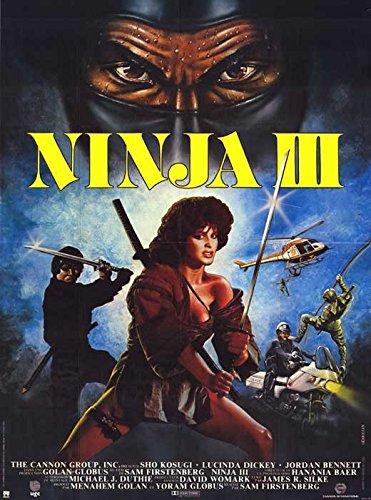 Amazon.com: Pop Culture Graphics Ninja 3: The Domination ...
