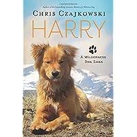 Harry: A Wilderness Dog Saga