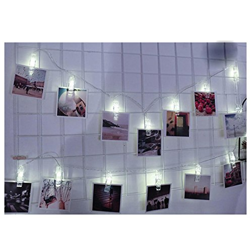 HP95(TM) 1.5M 10 LED Hanging Card Photo Clip Lights 2xAA Battery Lamp Home Decoration for Wedding Newborn Baby Party (Halloween Stores Nearby)