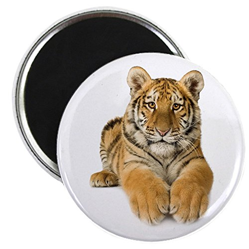 2.25 Inch Magnet Bengal Tiger Youth