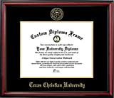 Texas Christian University Affordable Diploma Frame (OTHER)