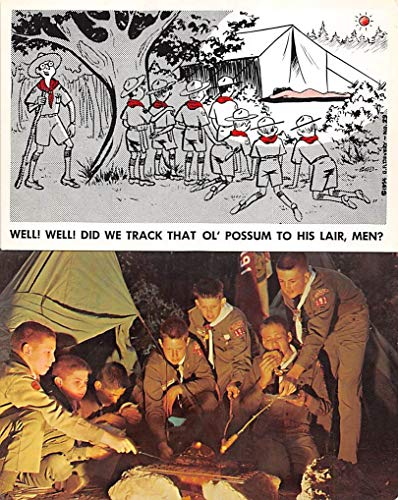 Scouts Post Card Scout Comic Postcard Unused