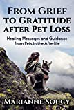 From Grief to Gratitude after Pet Loss: Healing