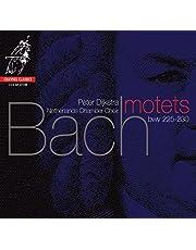 Bach, J.S.: Motets