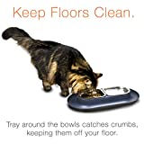 Hepper Nomnom Modern Cat and Dog Dish with Stainless Steel Bowls. Wide Tray to Keep Floors Clean and Ants Out of the Food! Color Green