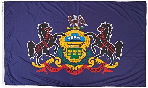 Cheap Annin Flagmakers Model 144680 Pennsylvania State Flag Nylon SolarGuard NYL-Glo, 5×8 ft, 100% Made in USA to Official Design Specifications