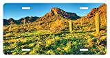 Saguaro License Plate by Ambesonne, Picacho Peak at Sunrise Surrounded by Barren Area Hostile Living Contidions Theme, High Gloss Aluminum Novelty Plate, 5.88 L X 11.88 W Inches, Green Blue
