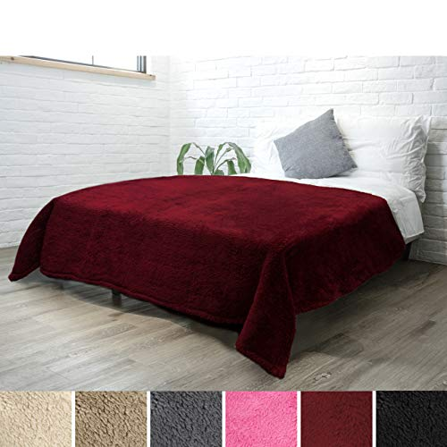 (PAVILIA Luxury Sherpa Twin Size Bed Blanket | Fluffy, Plush, Large Throw for Couch, Sofa | Soft, Lightweight, Microfiber | Solid Wine Red Bedding Blanket | 60 x 80 Inches)