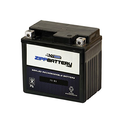 (Chrome Battery YTZ7S powersports battery)