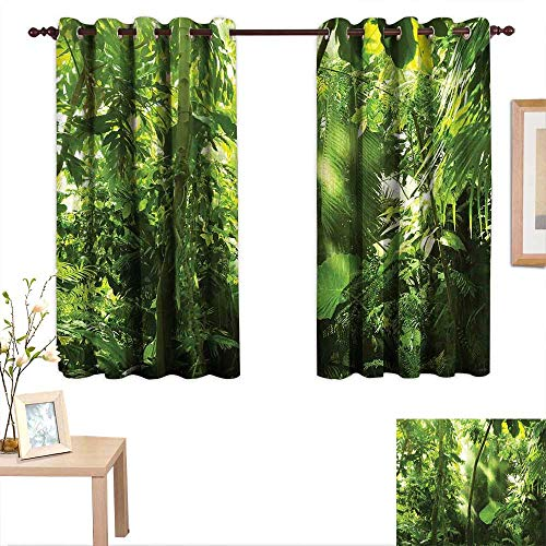 Luckyee Forest Drapes for Living Room Summer Tropical Monsoon Jungle with Bamboos Types of Plants and Large Leaves 63