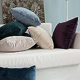 MIULEE Pack of 2, Velvet Soft Solid Decorative