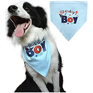 BINGPET Dog Birthday Bandana Pet Scarf Blue