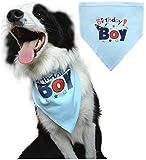 #6: Dog Birthday Bandana Pet Scarf Blue