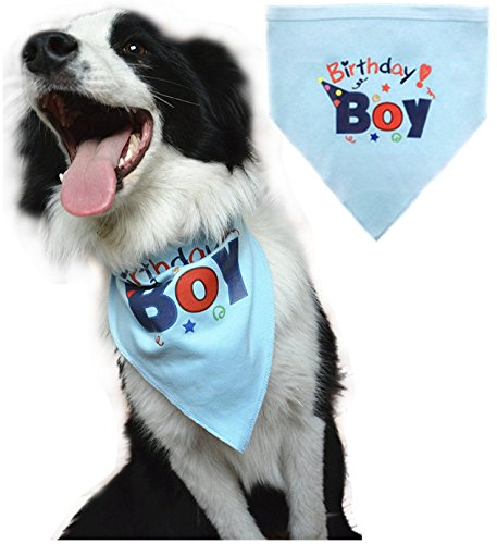 BINGPET Dog Birthday Bandana Pet Scarf Blue - Large Pet Bandana