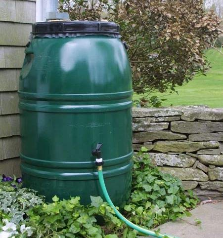 Bright Outdoors- Rain Barrel-Rain Water Catcher- Green Polyethylene Plastic 60 Gallon Capacity with Spigot and Removable Lid - Reinventing The Way You Save Rain Water ()